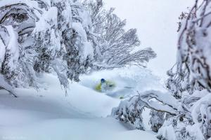Karl Gray Gallery - Drew in Deep mount buller falls creek powder snow - Karl Gray